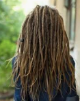 Rear view of female with mid-back length, dark blonde dreadlocks with wispy ends.