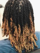 Two-strand twisted dreads with blonde tips.